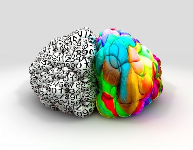 Hemisferios cerebrales y personalidad