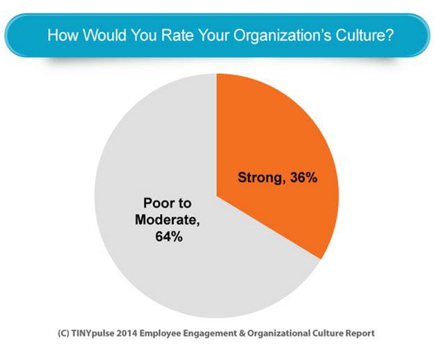 Identidad, Cultura y Organización