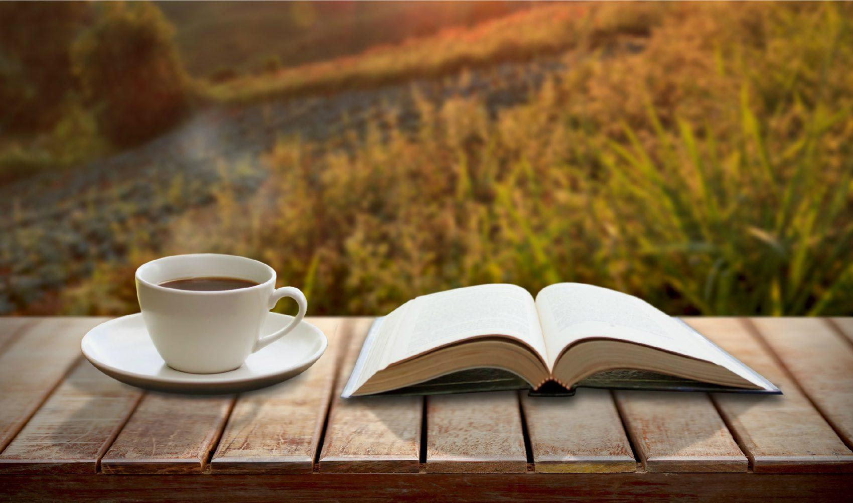 Los libros en verano saben mejor, seis títulos para saborear este verano
