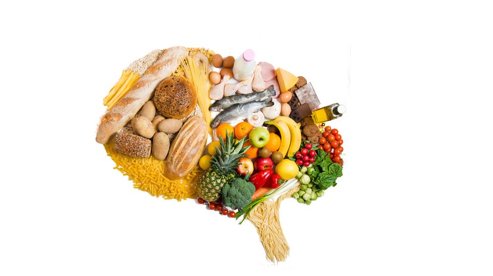 Cervell-i-aliments2