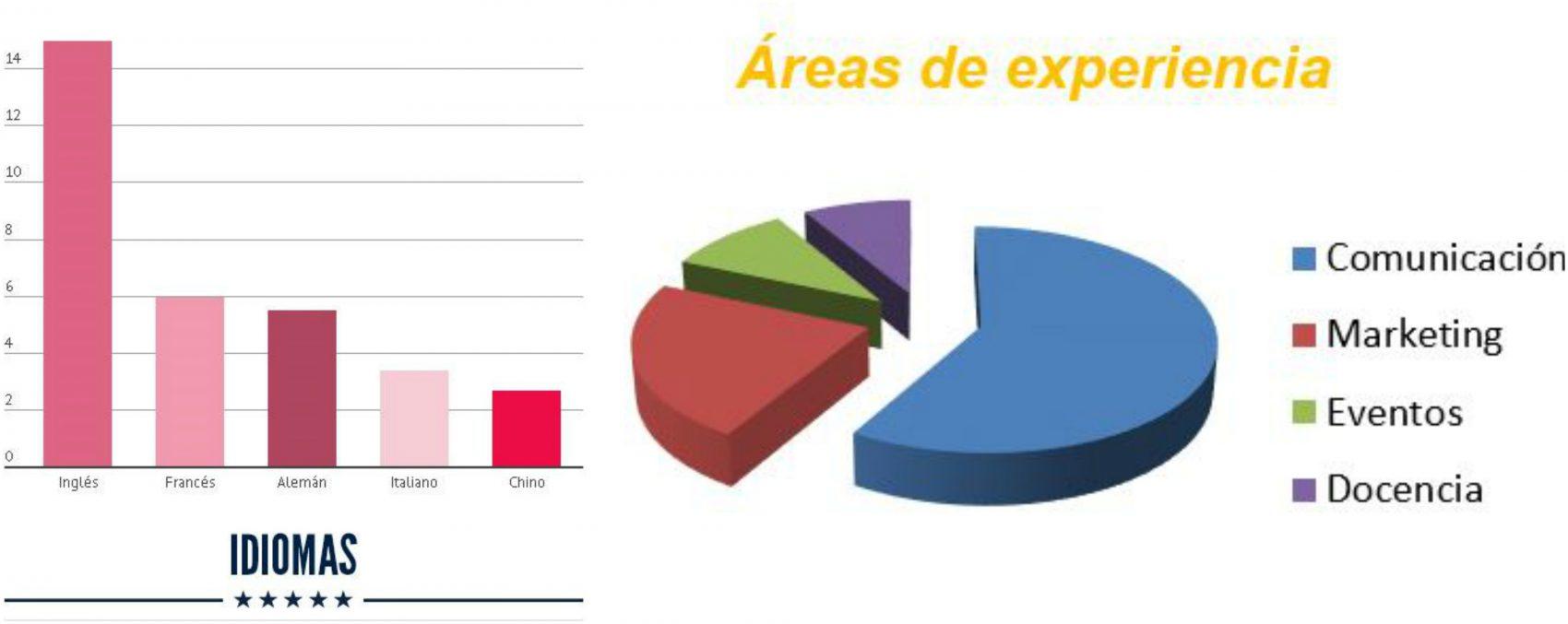 gráficos-áreas-de-experiencia