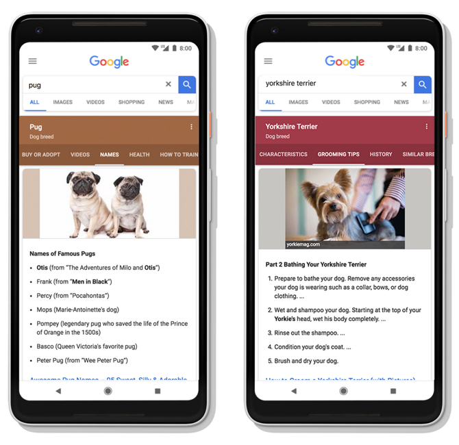 bluered-google-contenido-dinamico