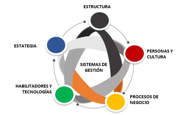areas-programa-alta-direccion