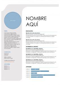 cv-perfil-junior-ejemplo
