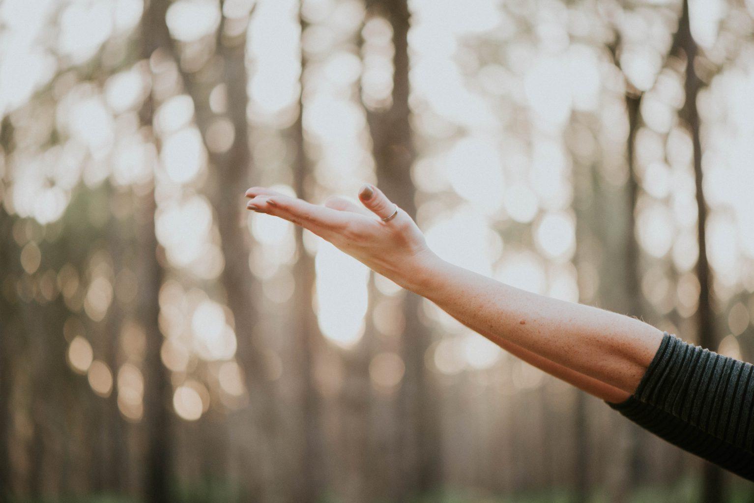 Employee Wellbeing Programs, una elección win-win